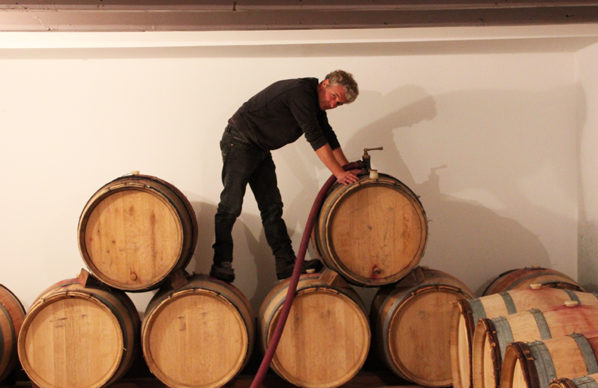 Michel Guignier Les Améthystes Vinification - photo 3